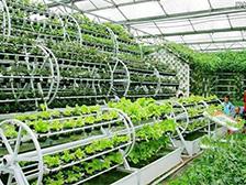 现代农业经营与管理高级研修班