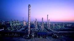 武汉大学中国石油化工股